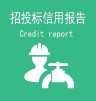 招投标企业信用报告
